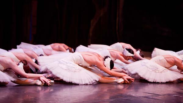 dancers from the corps de ballet sit on their legs in Swan Lake tutus