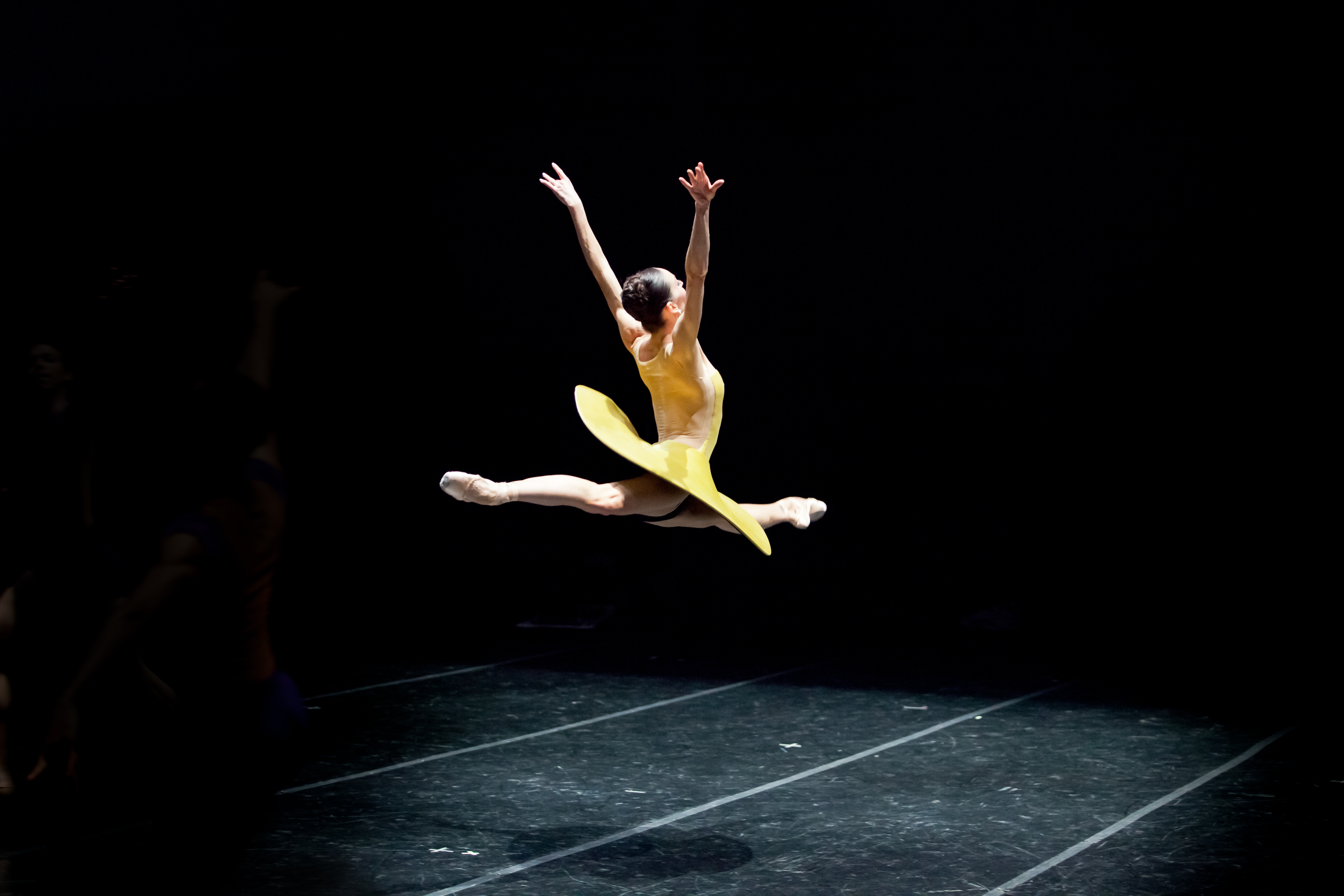 Pennsylvania Ballet Principal Dancer Amy Aldridge in William Forsythe's The Vertiginous Thrill of Exactitude. Photo: Alexander Iziliaev.