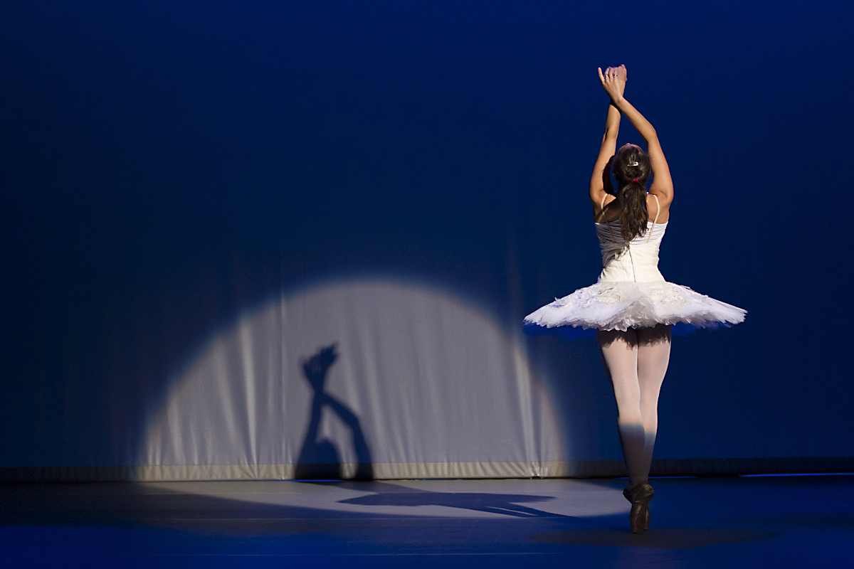 ballet dancer as a swan