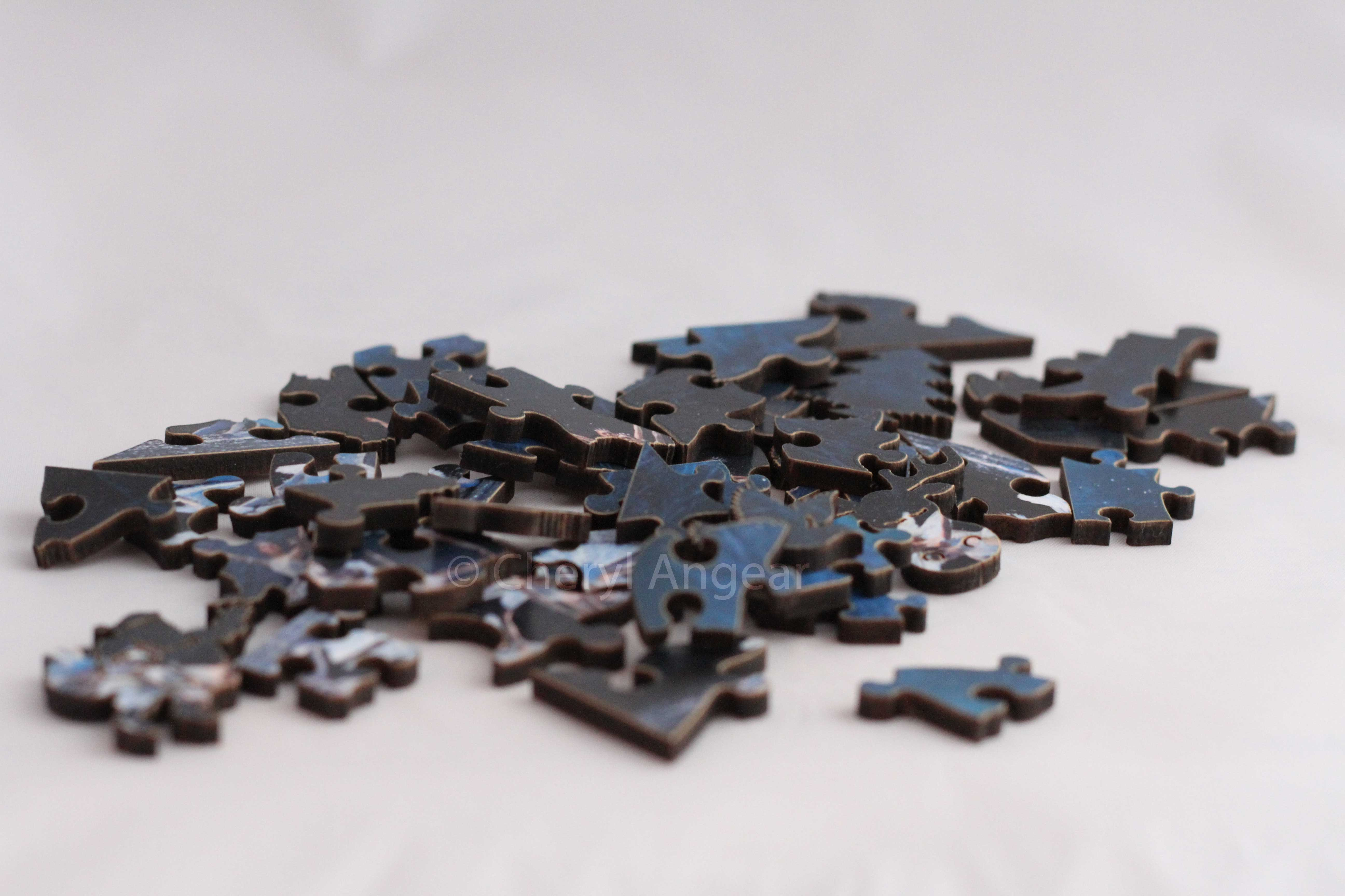 wooden puzzle Photograph by Cheryl Angear